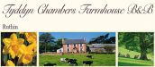 TYDDYN CHAMBERS FARMHOUSE B&B